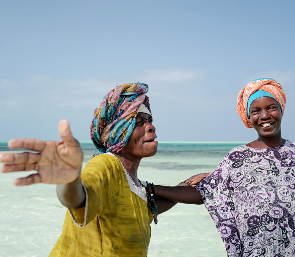 Zanzibar Island Dhows