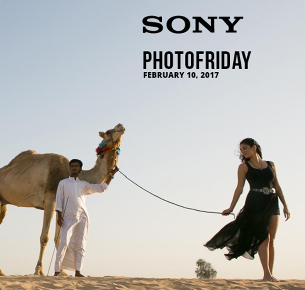 PhotoFriday