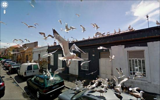 Images found on the Google Maps street view