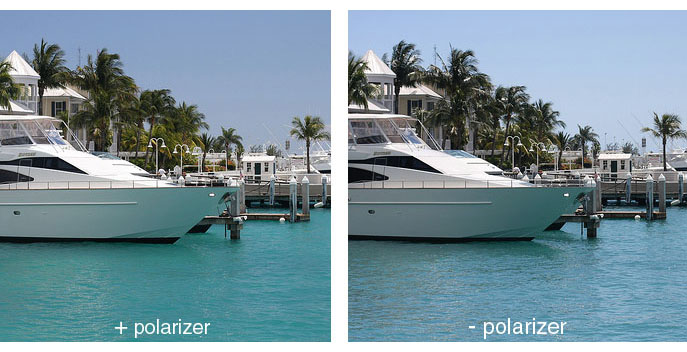 Images with and without polarizing filter
