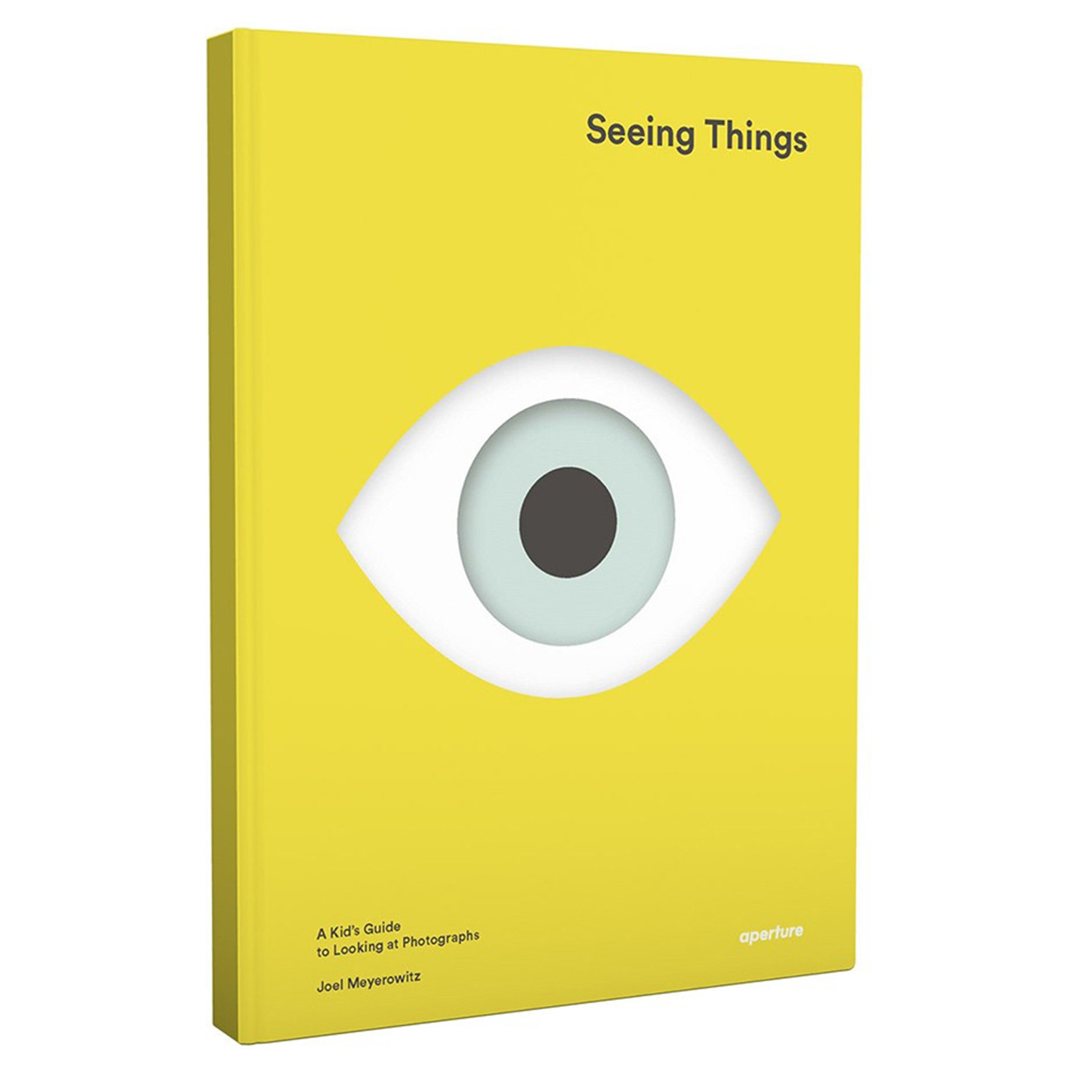Seeing Things: A Kids Guide To Looking At Photographs