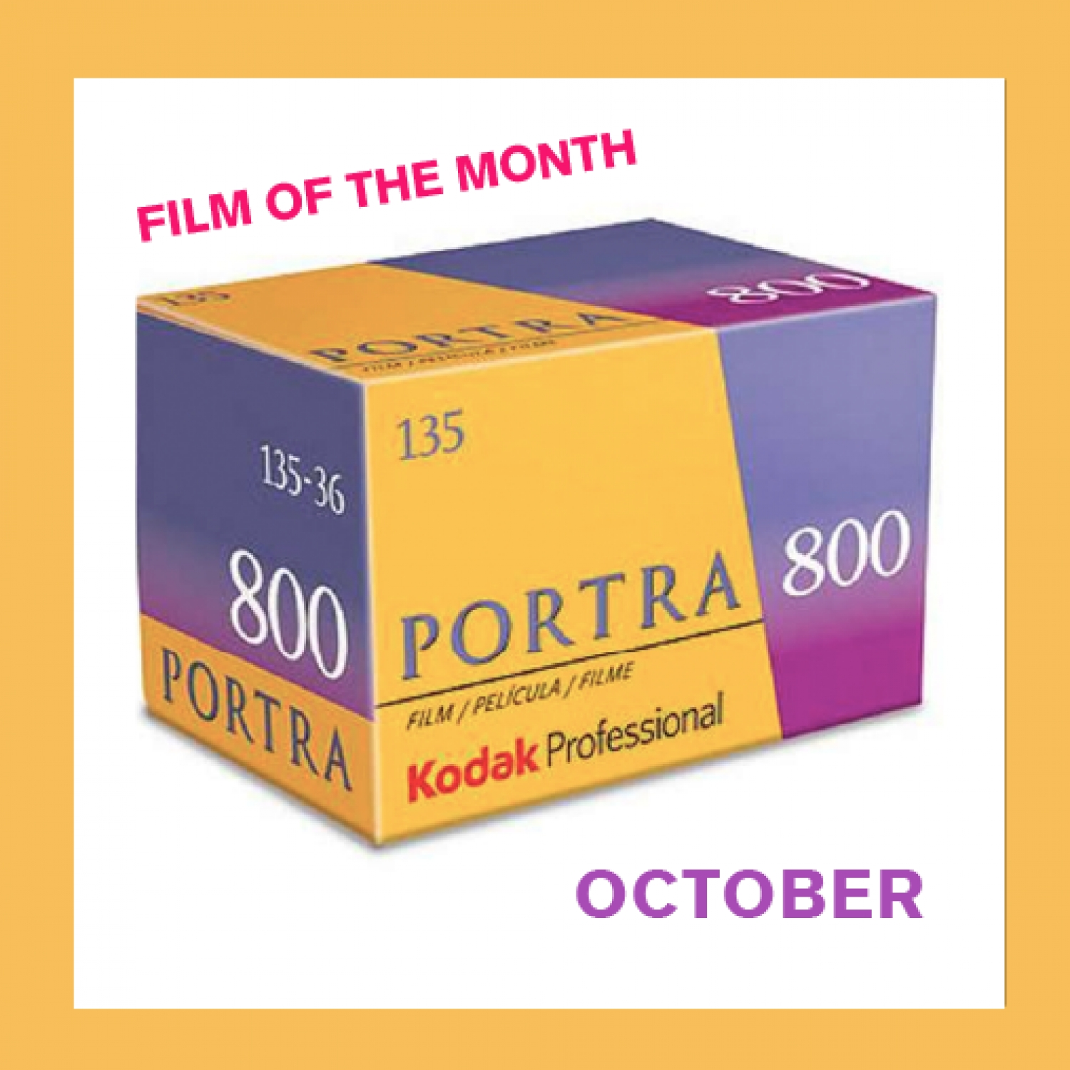 Film of The Month | Kodak Portra 800 (35mm) Single Color Negative Film