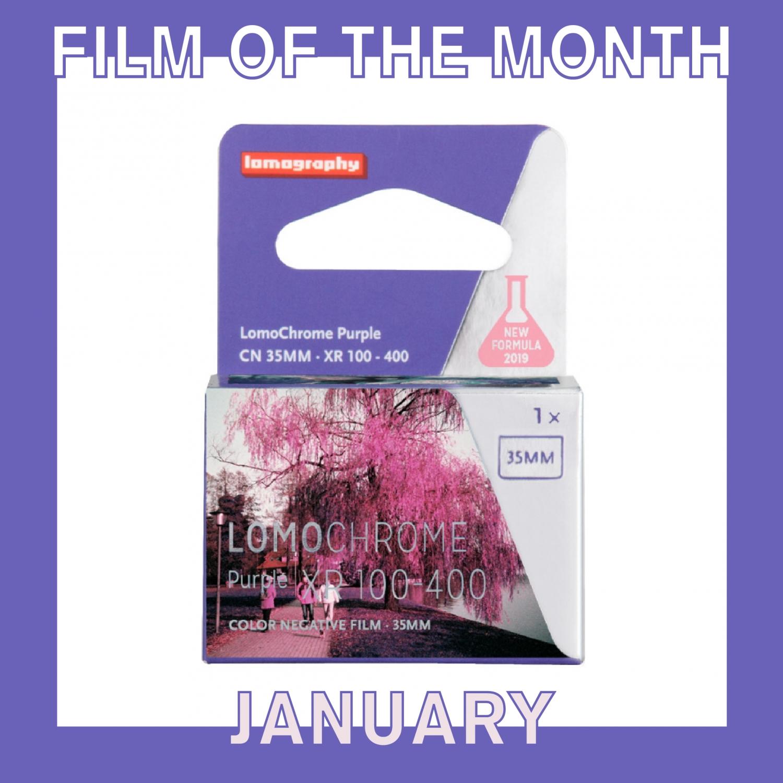 Film of The Month   Lomo Purple (35mm) Single Color Negative Film