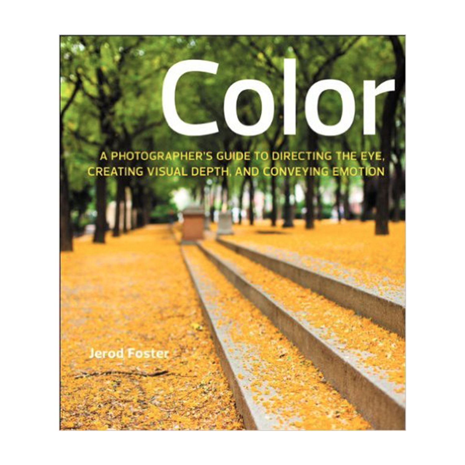 Color: A Photographer's Guide to Directing the Eye, Creating Visual Depth, and Conveying Emotion