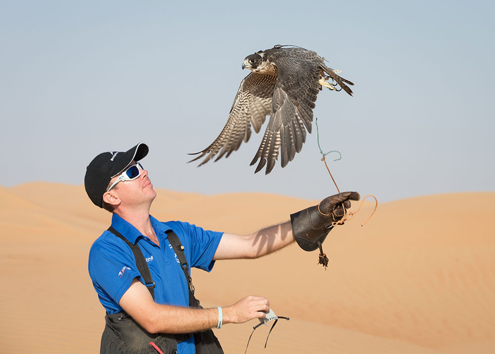Unseen Trails: Dubai Desert Conservation Reserve